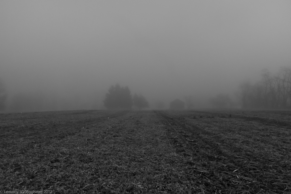 Farmhouse in Fog