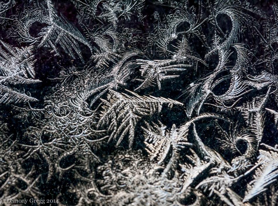 Frost Fire