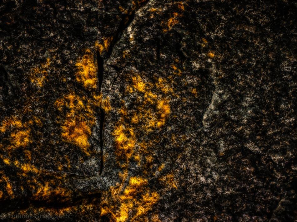 Algae II, a Gash in Stone